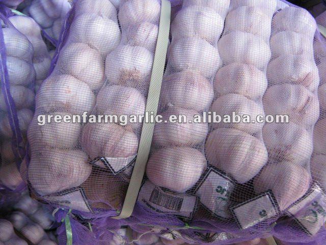 normal white garlic and pure white garlic in jinxiang
