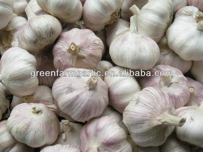 Pure white garlic 5cm