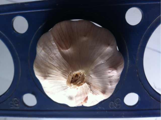 chiniese 2017 new crop fresh white garlic