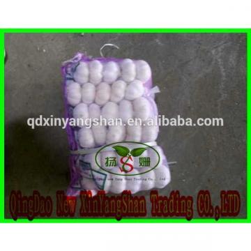[HOT]Fresh Garlic by 5kg/10kg/ small pakage