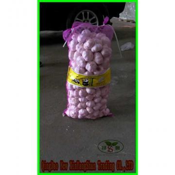 Chinese White Garlic Price Professional Exporter In China