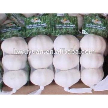 YUYUAN brand hot sail fresh garlic garlic essence