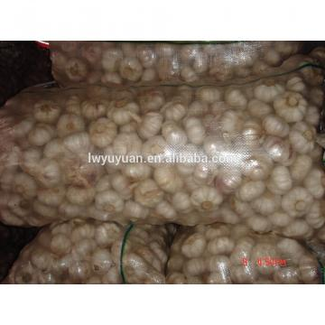YUYUAN brand hot sail fresh garlic garlic mesh bag