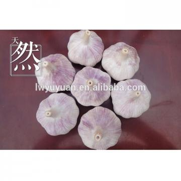 YUYUAN brand hot sail fresh garlic garlic extract liquid