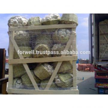Hot sale Egyptian fresh garlic (Red, White) for export