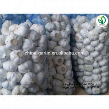 2017 China Purple Garlic Price