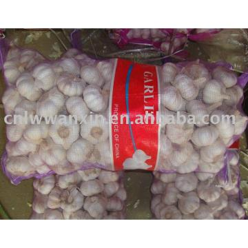 chinese fresh garlic 10kg bag