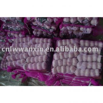 chinese new crop fresh garlic