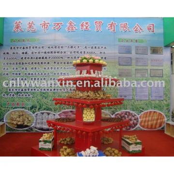 china fresh vegetable and fruits supplier