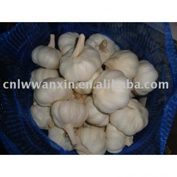 packing garlic meshbag