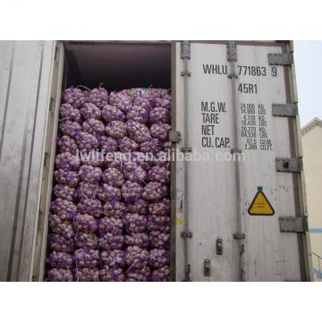 Most Favourable of 2017 Shandong Garlic / Jinxiang Garlic / Normal White Garlic