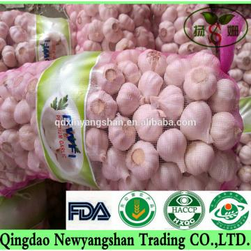 [HOT] Pure white garlic/white garlic Professional exporters