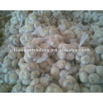 2017 Chinese new crop garlic