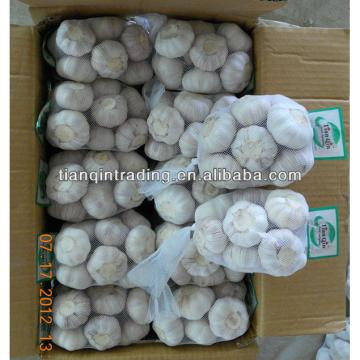 2017 natural garlic from China