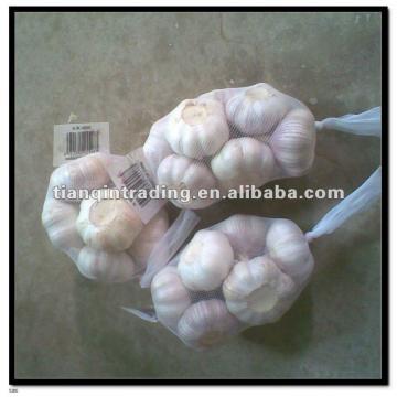 2017 new crop garlic
