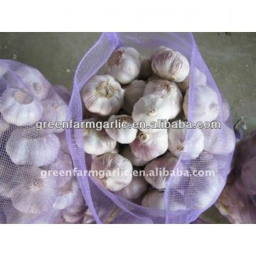 2017 chinese fresh garlic