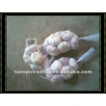 2017new crop white garlic from China
