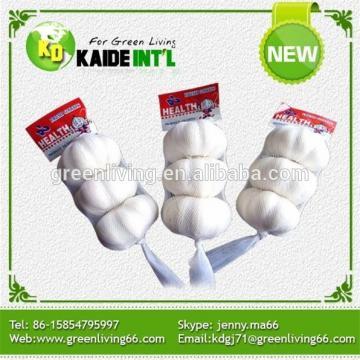wholesale garlic in China