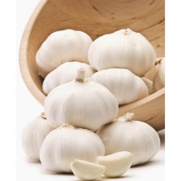 wholesale alibaba normal white garlic price black garlic