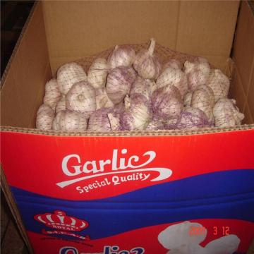 CHINESE GARLIC WITH 10KG CARTON PACKAGE