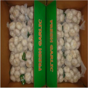 CHINA GARLIC 1KG BAG 10 BAGS PER CARTON
