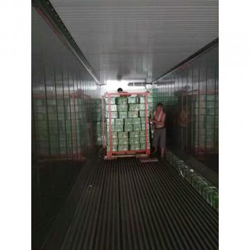 CHINA NEW CROP GARLIC WITH CARTON PACKAGE TO HONDURAS
