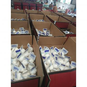 pure white garlic with tube package to Turkey Market 2018 new crop