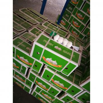 2018 pure white garlic with carton package to Nicaragua Market