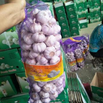 5cm Normal white garlic with 5kg meshabg package to Algeria market from china ,2018