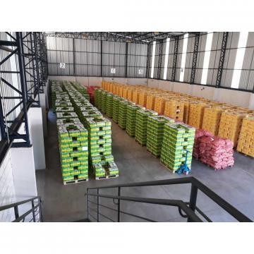 2018 Cold storage china Garlic to Brazil Market