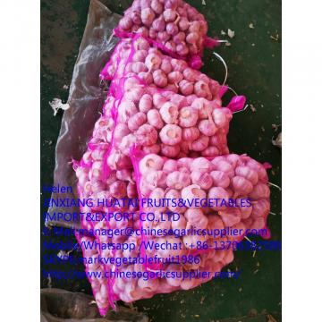 china garlic with meshbag to Russia market