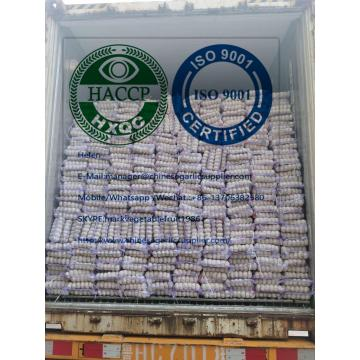 pure white garlic with tube meshbag package to Lebanon market
