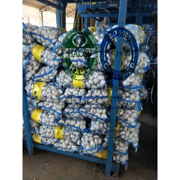6.0-6.5cm pure white garlic with 10kg mesh bag To turkey market from china garlic factory