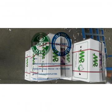 2020 new crop china garlic with 10KG loose carton package to Brazil market