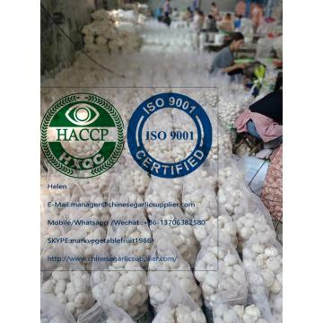 China Pure white garlic with meshbag & carton package to Turkey Market