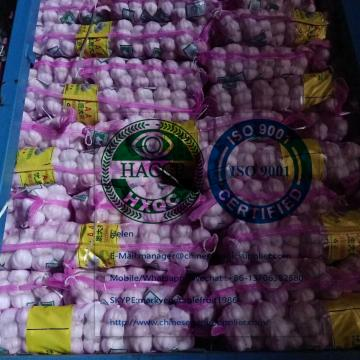 Small Package packed Normal White Garlic To Ukraine Market