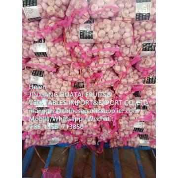 Normal white garlic with meshbag to Middle East market From China garlic factory !