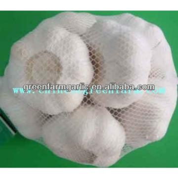 pure white garlic 5cm in 500g bags