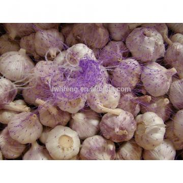 2017 new crop of chinese pink garlic