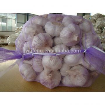 lowest price and high quality Chinese Garlic / White Garlic