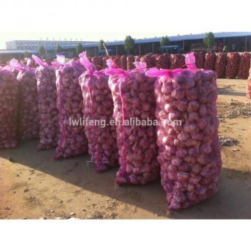 supply Chinese Top quality fresh Normal White Garlic / fresh Garlic