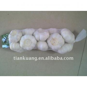 good fresh white garlic