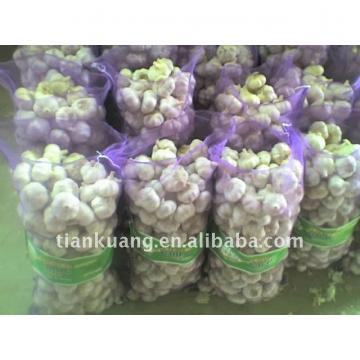 high quality Chinese normal garlic