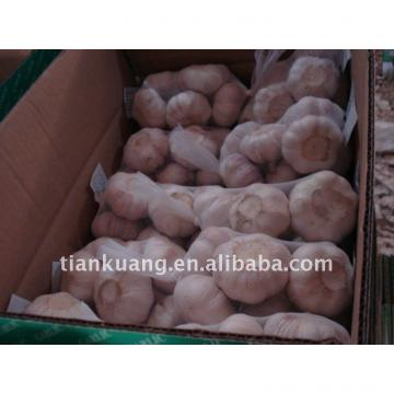 china cheap garlic