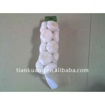 6cm pure white garlic