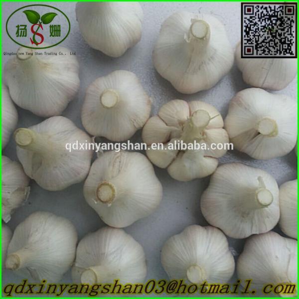 Chinese White Garlic Price Professional Exporter In China #1 image