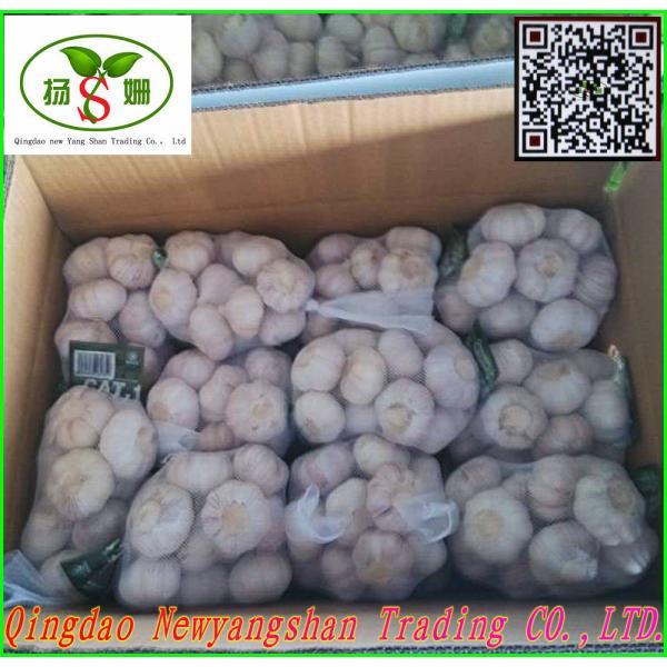 Price Of Fresh Chinese Garlic Specification 4.5cm 5.0 cm 5.5cm 6.0cm #4 image