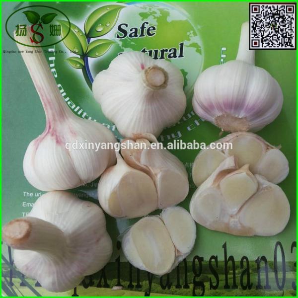 Price Of Fresh Chinese Garlic Specification 4.5cm 5.0 cm 5.5cm 6.0cm #1 image