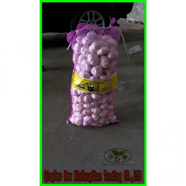 Garlic Wholesale Price Per Ton normal/Pure/peeled White Garlic #4 image