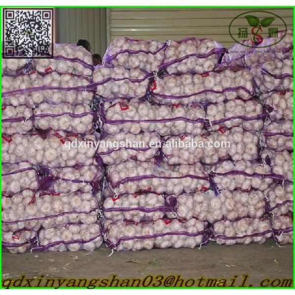 Garlic Wholesale Price Per Ton normal/Pure/peeled White Garlic #5 image